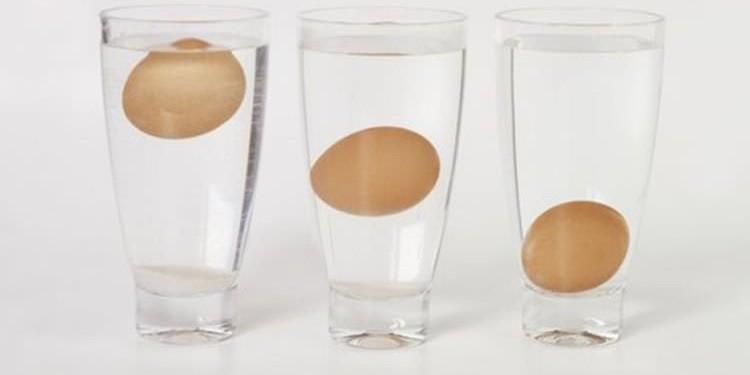 Πόσο φρέσκο είναι το αυγό που τρως;