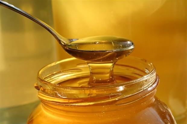 honey (620 x 411)