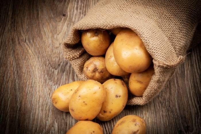 patates_227552377-768x512 (700 x 467)