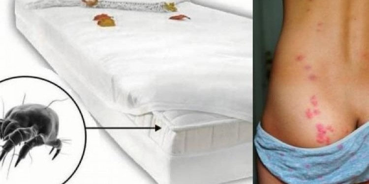 καθαρίσετε σωστά το στρώμα του κρεβατιού σας