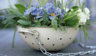Κρεμάσετε τα Φυτά