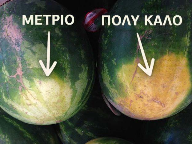 διαλέξετε εύκολα το καλύτερο καρπούζι 2