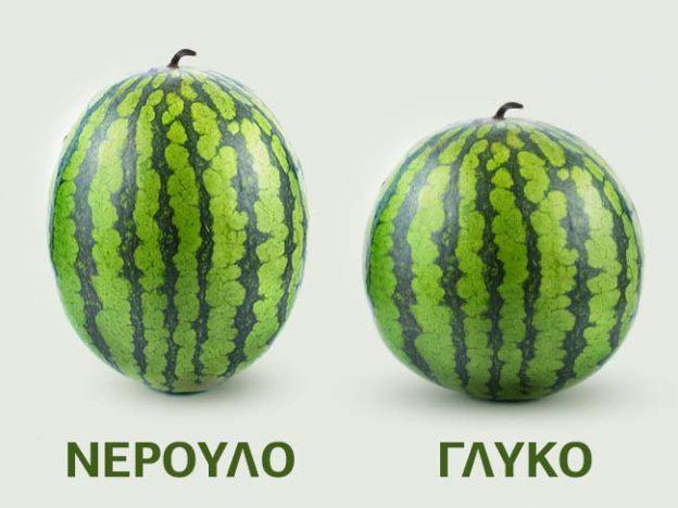 διαλέξετε εύκολα το καλύτερο καρπούζι 4