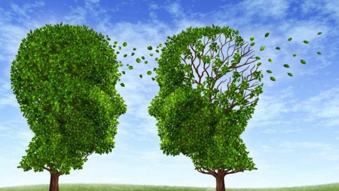 εξαφανίζει το Αλτσχάιμερ 3