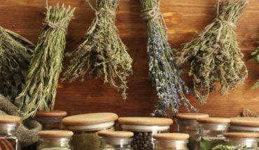 Βότανα και οι θεραπευτικές