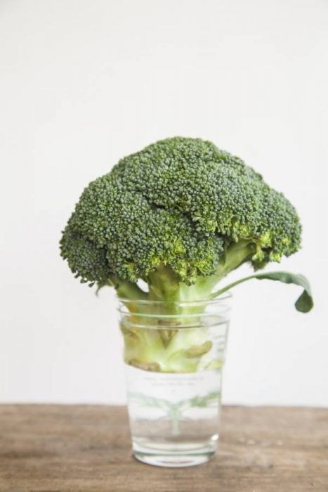 Πώς να μη χαλάνε φρούτα και λαχανικά στη ζέστη 5