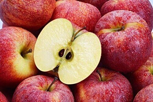 Οι 4 ισχυρότεροι αντικαρκινικοί σπόροι 1