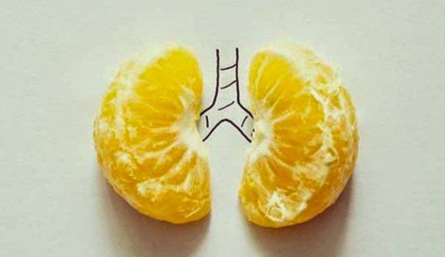 Μανταρίνι - το μοναδικό φρούτο