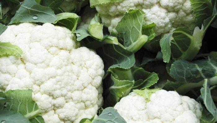 Οι 10 υπερ-τροφές του φθινοπώρου σε φωτογραφίες! 4