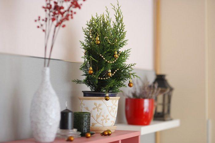 Προετοιμάστε το Σπίτι σας για τις Γιορτές Κάνοντας ΑΥΤΑ 3